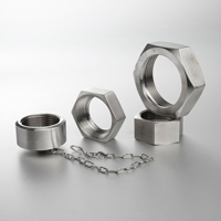 Blind Nut with Stainless Chain